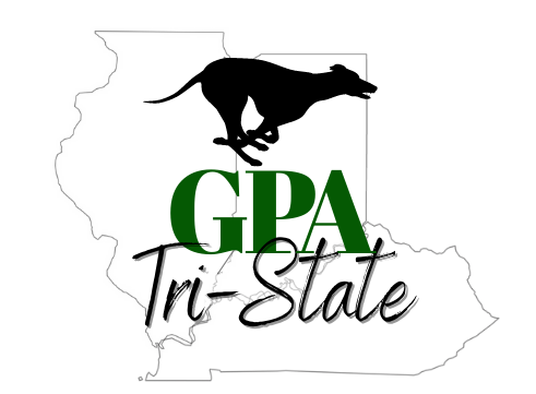 GPA Tristate